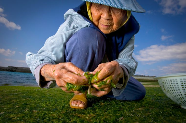 The Secrets of Long Life- National Geographic